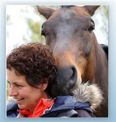 Coaching with horses in Peins foto 2